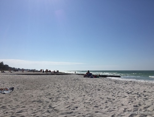 Beautiful day at the beach