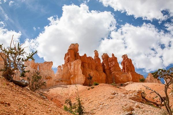 9-peekaboo trail