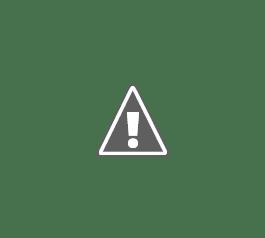 Ecopas: Purificador solar de agua para piscinas, fuentes y estanques