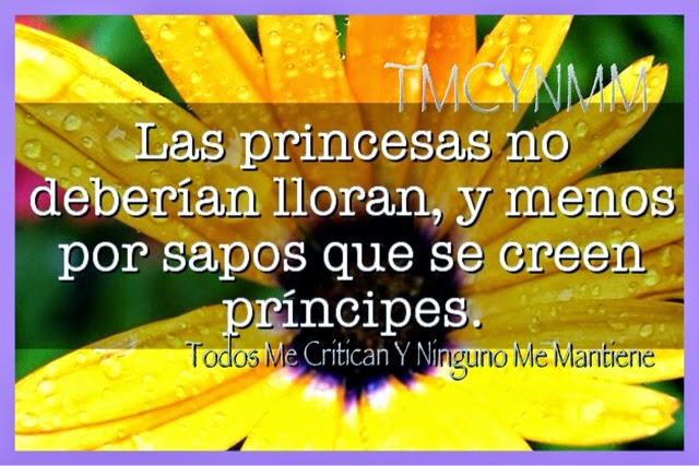 El Rincón De Las Frases Las Princesas No Deberían Lloran