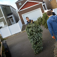 Christmas Tree Pickup 2014 - DSC_0072.jpg