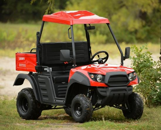 150cc Rancher Farm Utility UTV Cart Hammerhead Twister Ranger Side by Side Polaris Owned