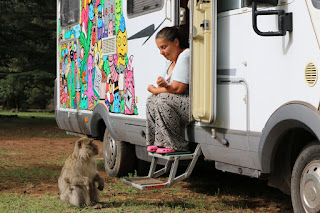 Azrou a makak berberský, Maroko