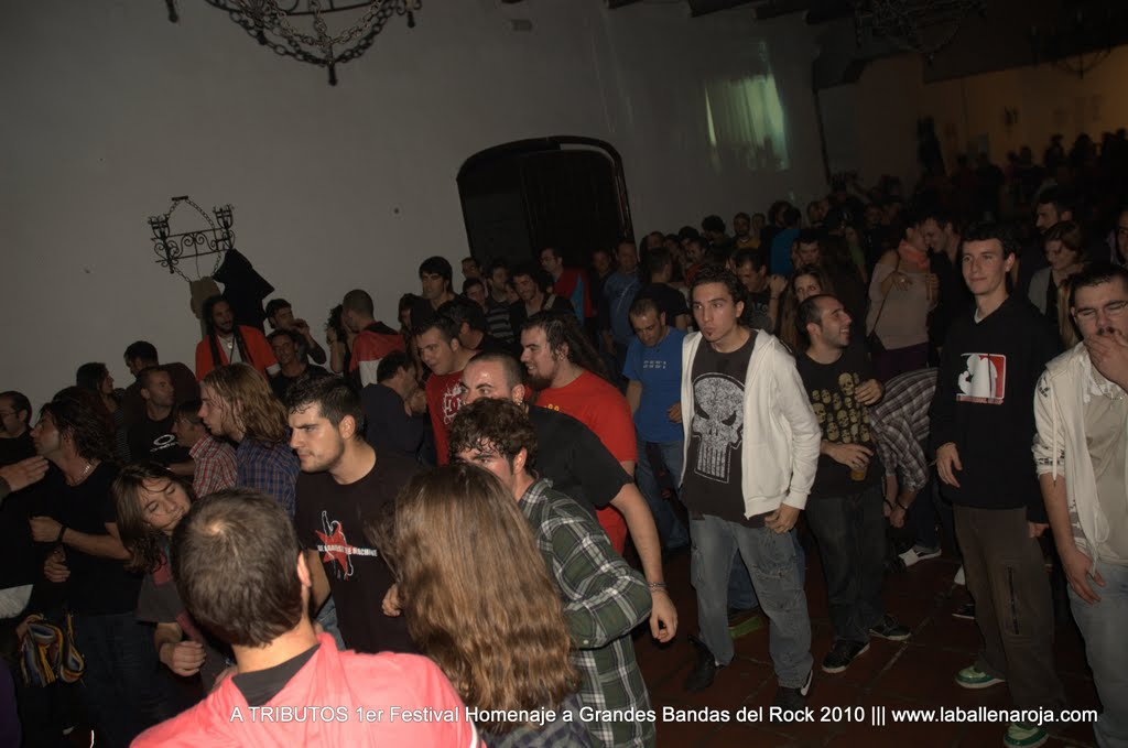 A TRIBUTOS 1er Festival Homenaje a Grandes Bandas del Rock 2010 - DSC_0236.jpg