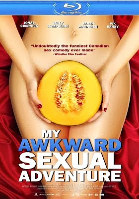 Filme Poster My Awkward Sexual Adventure BRRip XviD & RMVB Legendado