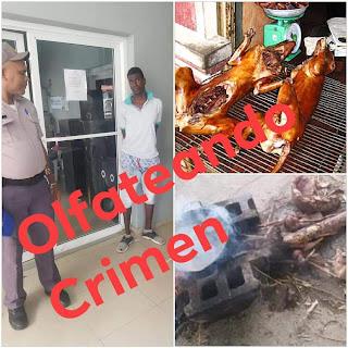 Un hombre que  mató dos perros y los cocinó en Moca fue apresado por la policía