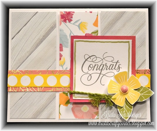 2016 happy times card class - C3 DSC_1359
