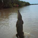 Australia043.JPG