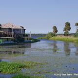 04-06-12 Myaka River State Park - IMGP9899.JPG