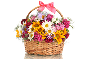 flower-basket