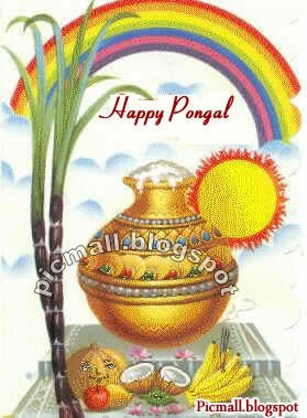 Happy Pongal  Image - 5
