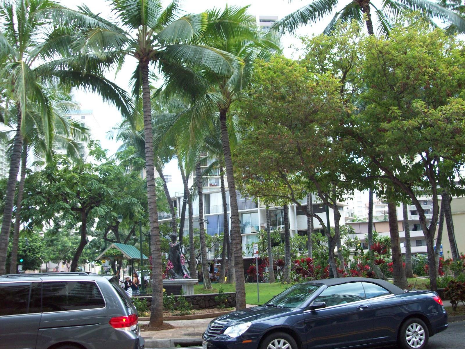 Hawaii Day 2 - 114_0975.JPG