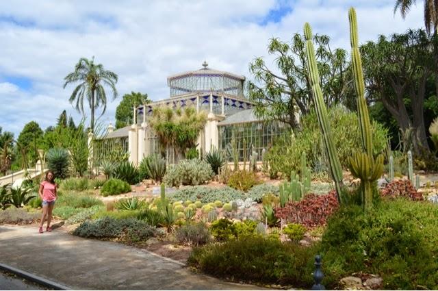 Through The Eyes Of The Roe S Adelaide Botanical Gardens