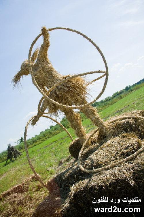 منحوتات القش العملاقه فى البيئه الريفيه