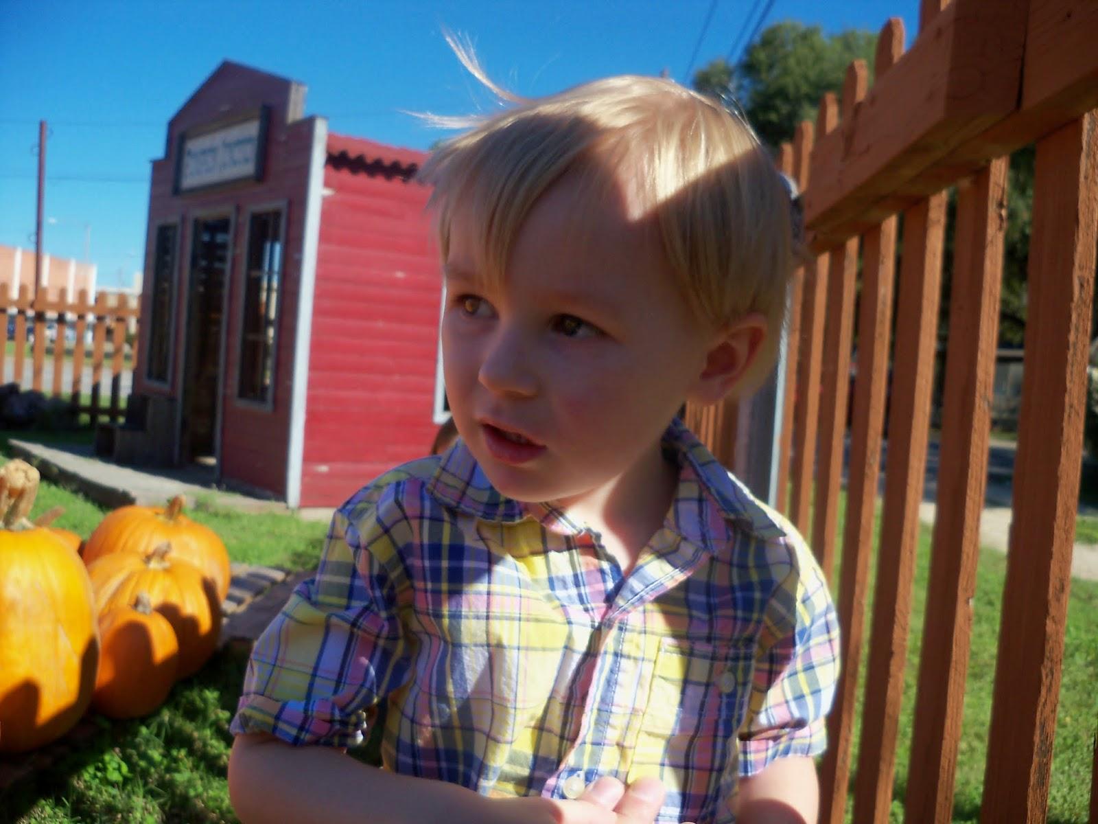 Pumpkin Patch 2014 - 116_4451.JPG