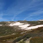 Snow on the side of Mt Twynam (88897)