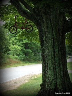 Bike in the tree