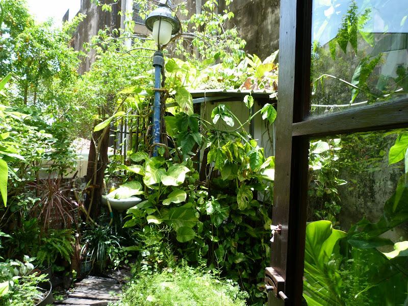 mini jardin de ce restaurant