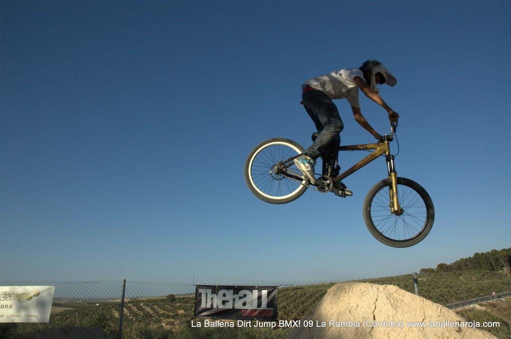 Ballena Dirt Jump BMX 2009 - BMX_09_0108.jpg