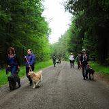 20130623 Erlebnisgruppe in Steinberger See (von Uwe Look) - DSC_3652.JPG