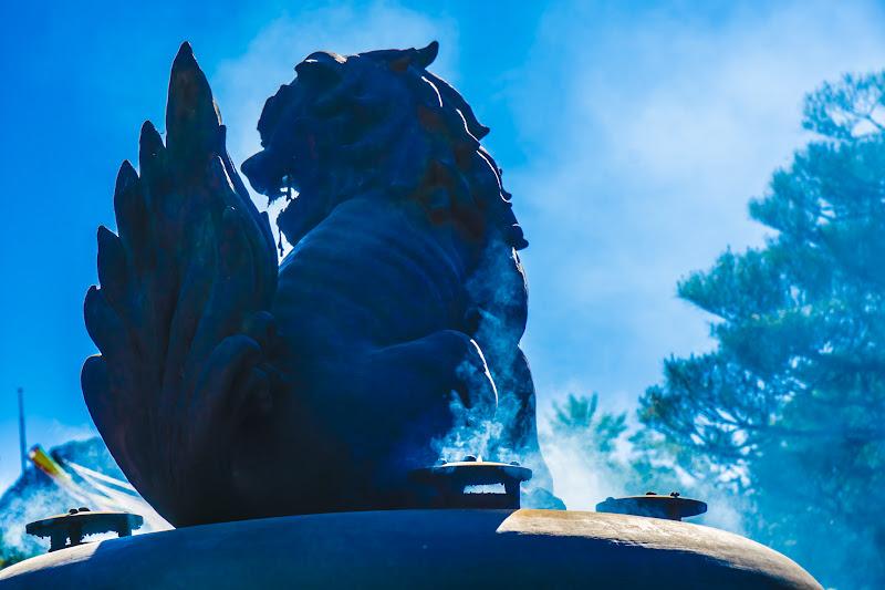 善光寺 狛犬 写真3
