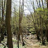 Campaments Amb Skues 2007 - ROSKU%2B133.jpg