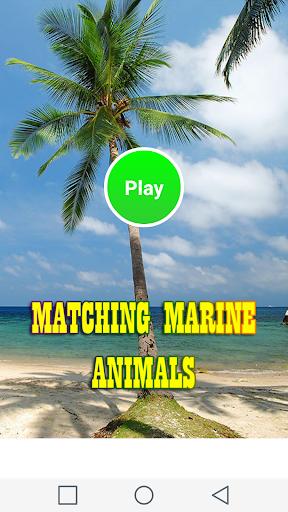 海洋動物のマッチング