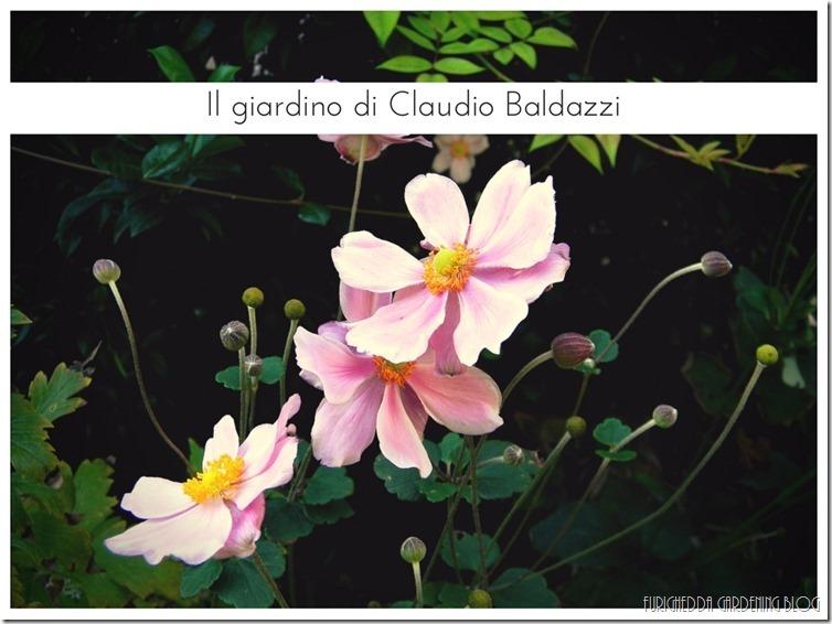 Il giardino di Claudio (24)