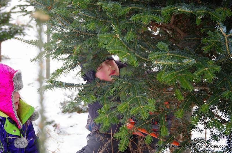 Vermont - Winter 2013 - IMGP0513.JPG