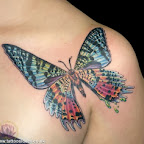 Color - Shoulder Tattoos Designs