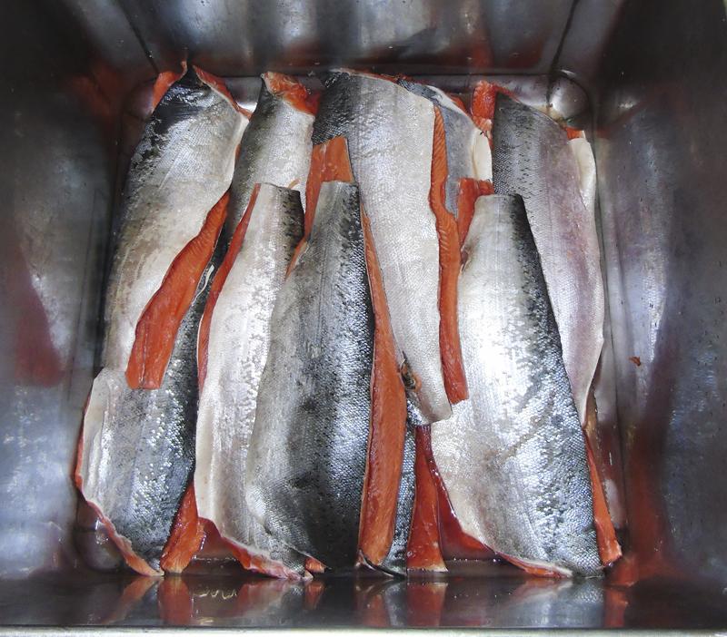 кто где ловит лосось