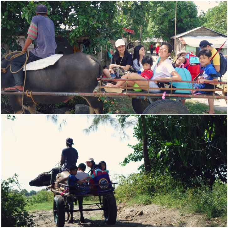 Bukid2016 5