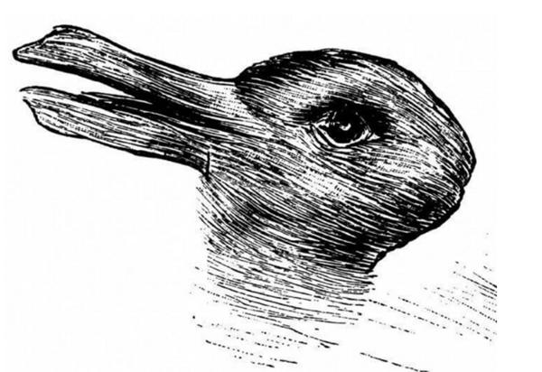 ilusion pato conejo