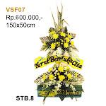 VSF07.jpg