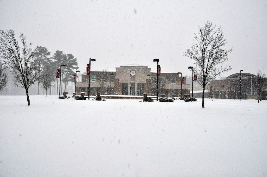 UACCH Snow Day 2011 - DSC_0010.JPG