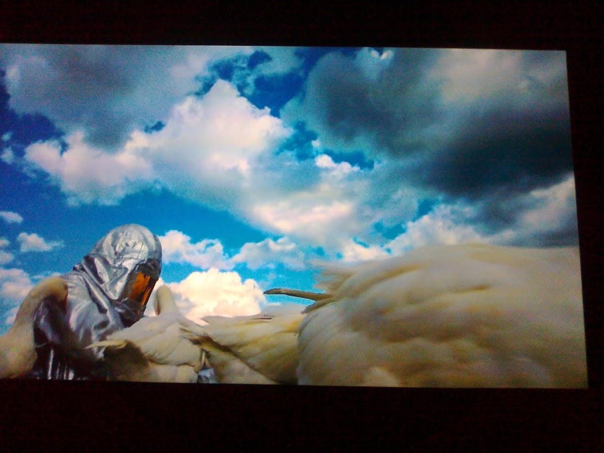 Ein Film über die Mondgänse (moon goose) auf der Kunst Ausstellung Ostrale Dresden