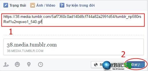 Hình 7 - Đăng ảnh động, đăng ảnh gif lên Facebook