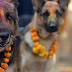 Festivals That Are Only Celebrated In Nepal
