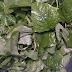 कोरोना काल में आपके लिए रामबाण साबित हो सकती है ये देसी सब्जी ,यहां जाने इसके अनेक फायदे