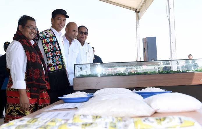 Jokowi Mau RI Swasembada Garam di 2015, tetapi sampai 2021 Masih Impor