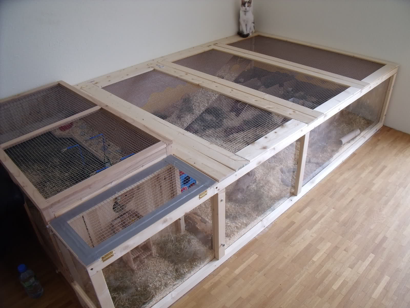 I would like to know how to make a diy cage supplies for How to make a diy hamster cage