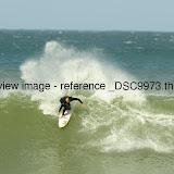 _DSC9973.thumb.jpg