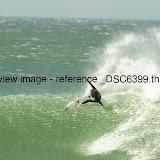 _DSC6399.thumb.jpg