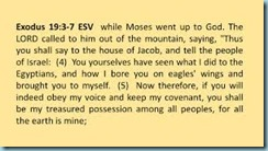 Sinai Covenant