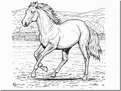 caballo-para-colorear1