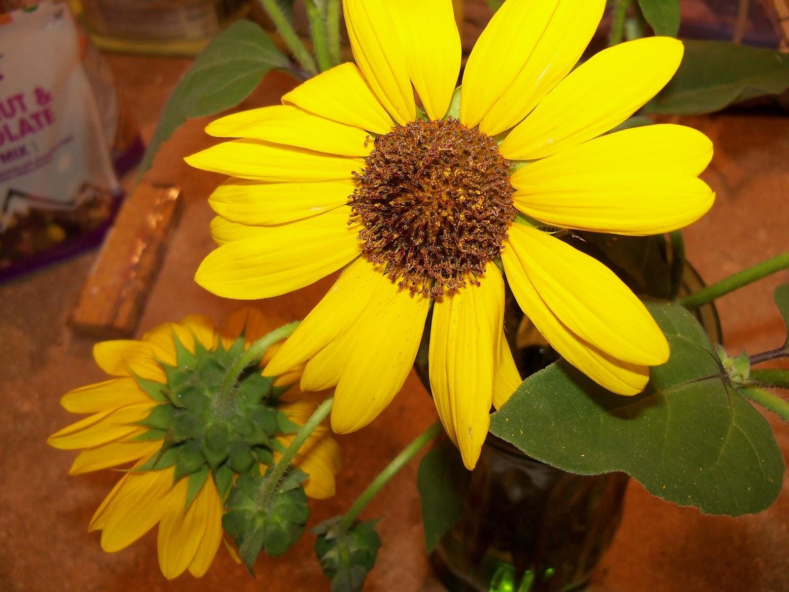 Bouquets - 115_2916.JPG