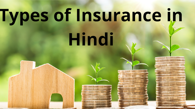 Types of Insurance in Hindi