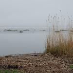 Latvian Archery Federation Cup. Babite lake (LAT). 2010 05 16