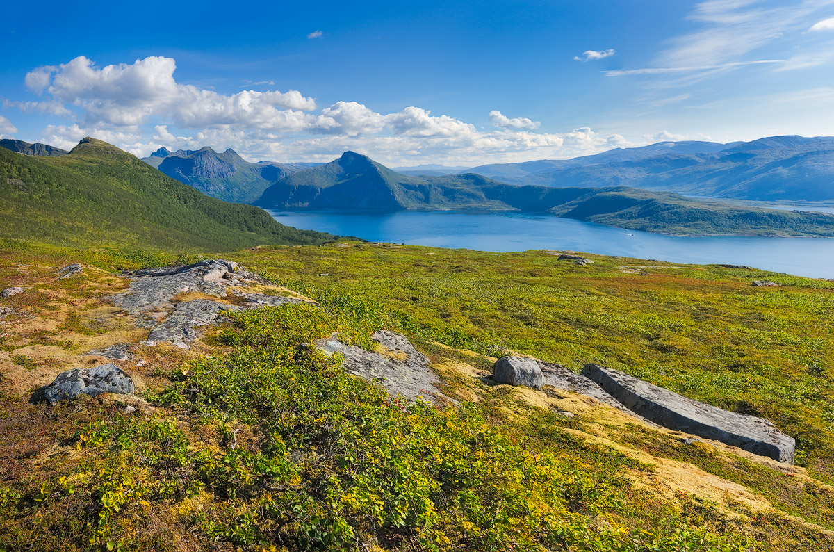 Late Summer in the Arctic Circle (Norway) Have a great week
