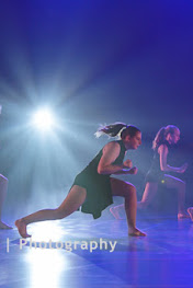 Han Balk Voorster Dansdag 2016-4529-2.jpg